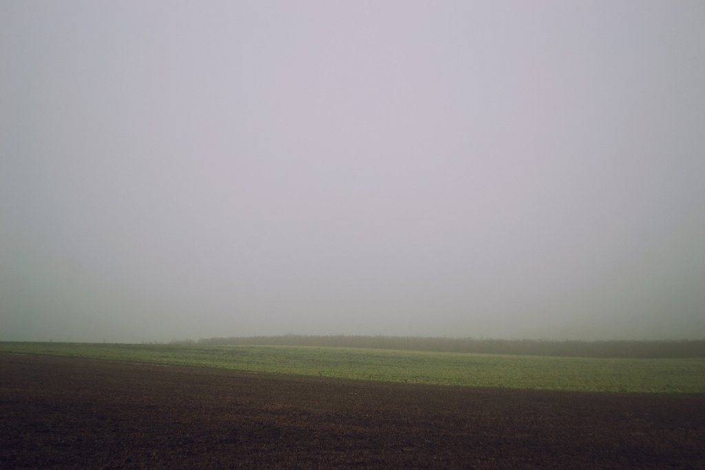 field fog layers